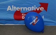 Vor der Landtagswahl in Mecklenburg-Vorpommern am Sonntag liegt die AfD einer…