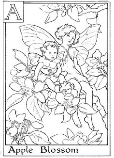 Fairy printable colouring page.  A is for Apple Blossom.