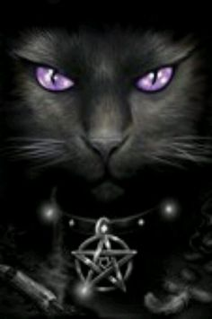 Anne Stokes---The cat could be a shape- shifter. She has lovely purple eyes