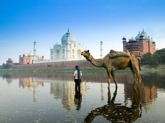 Take a Trip to Agra, home of Taj Mahal. It is a stop on the Golden Triangle of India with Jaipur and Delhi. Book Special Tour Packages to Agra Now! Taj Mahal, Tourist Places, Places To Travel, Oh The Places You'll Go, Places To Visit, Voyager C'est Vivre, Camelo, Excursion, India Tour