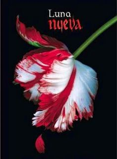 LUNA NUEVA, SAGA CREPUSCULO, STEPHENIE MEYER http://bookadictas.blogspot.com/search?updated-max=2014-07-07T01:19:00-04:30