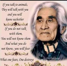 Discover and share Chief Dan George Quotes. Explore our collection of motivational and famous quotes by authors you know and love. Native American Prayers, Native American Spirituality, Native American Wisdom, Native American History, American Indians, American Symbols, Cherokee History, Indian Spirituality, American Religion