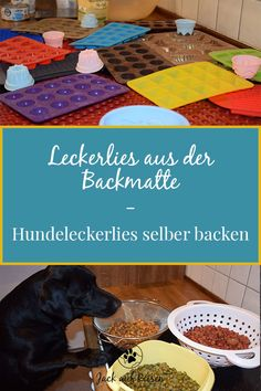 Leckerlies aus der Backmatte – Hundeleckerlies selber backen Have you ever considered making treats for your dog yourself? Here you will find our favorite recipes for treats from the baking mat. Pumpkin Recipes For Dogs, Dog Food Recipes, Healthy Recipes, Perros Pit Bull, Pitbull, Cat Tags, Dog Agility, Cat Food, Dog Accessories