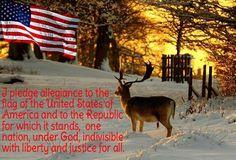I pledge allegiance ...