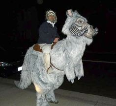 Star Wars Tauntaun Costume.