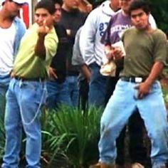 illegals (2)
