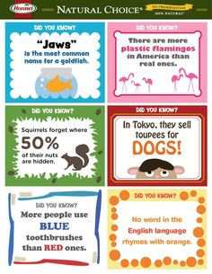 Free fun facts to print and share with your kids :) Are you ready to bring on the smiles? Notes For Kids Lunches, Lunch Notes, Kids Lunch For School, Healthy School Lunches, School Snacks, Kids Meals, Lunch Snacks, Kids Notes, Lunch Menu