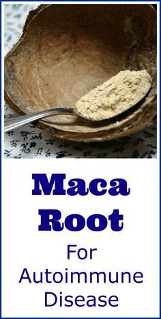 A lot of people are now using powdered maca root as a natural remedy for autoimmune conditions, such as thyroid disease and arthritis.
