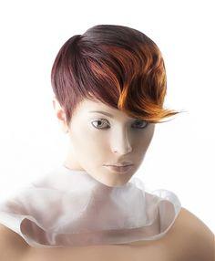 Scruples Short Brown Hairstyles