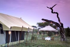Team building photographic safari in the Serengeti in Tanzania. image: Serengeti under Canvas Go Camping, Outdoor Camping, Camping Outdoors, Camping Ideas, Camping Images, Serengeti National Park, Top Tents, Out Of Africa, Closer To Nature