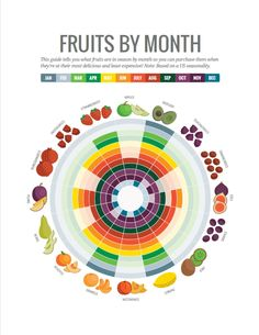 Fruits in season by month infographic