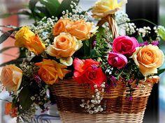 [flores-facebook-tumblr-rosas-las%2520flores-fotos%2520de%2520flores-715%255B3%255D.jpg]