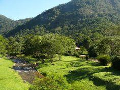 Casa do Ercilio - Rio Bonito de Cima - UOL Fotoblog