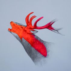 """Call Of The Wild"" by Louise McNaught"