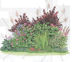 Неприхотливая клумба в тени Благодаря теневыносливым видам травянистых многолетников и кустарников можно красиво расписать темные уголки садового участка. Представленные растения растут на участках,освященных в утренние и вечерние часы. Не располагайте данную композицию под кустарниками, так как их корни потребляют много воды. Перед посадкой растений разрыхлите почву на глубину 60см.Удалите многолетние сорняки и старые корни растении. Заделайте в почву компост или зрелый навоз. Осен...