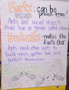 Facts and Details anchor chart!