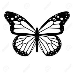 Blue Butterfly Discover A black and white vector butterfly A Black And White Vector Butterfly Royalty Free Cliparts . Butterfly Drawing, Butterfly Clip Art, Butterfly Painting, Butterfly Wallpaper, Butterfly Stencil, Butterfly Black And White, Clipart Black And White, Blue Butterfly, Easy Canvas Art