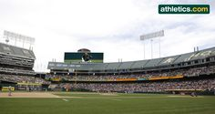 Look forward to improved #Athletics scoreboards & ribbon displays to start the 2015 season! http://clubhouseconfidential.mlblogs.com