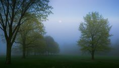 Foggy Spring Morning by Dave B on 500px