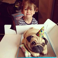 but then you would cut into and eat a pug!but then you would cut into and eat a pug! Pug Cake, Puppy Birthday, Animal Cakes, Pug Pictures, Cute Pugs, Novelty Cakes, Cute Cakes, Oeuvre D'art, Fur Babies