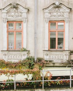 Autumn in Krakow | #plantsinfocus #plantstagram #minimal #somewheremagazine #oystermagazine #ifyouleave #theweekoninstagram #myfeatureshoot #HSdailyfeature #streetdreamsmag #vsco #lekkerzine #ink361 #phornography #thisveryinstant #ourmomentum #autumn #photozine #negativespace #phroommagazine #botanical #leafs #palepalmcollection #yetmagazine #greenery #contemporaryphotography #igerskrakow #colours
