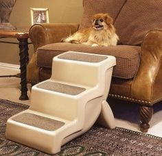 Pet Stairs for Small Dogs
