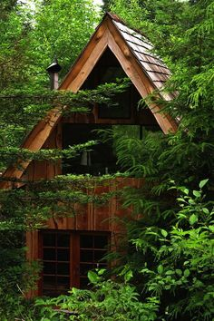 Off-Grid Japanes forest house in Oregon Forest Cabins In The Woods, House In The Woods, Cabin Homes, Log Homes, Japanese Tiny House, Japanese Style, Japanese Design, Traditional Japanese, Oregon Forest