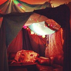 love blanket forts