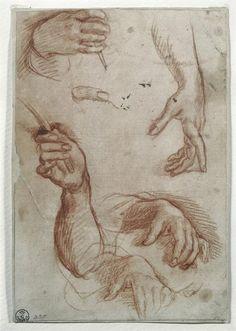 Andrea del Sarto (Andrea d' Agnolo), 1486-1530, Italian, Study of Hands.  Red chalk on paper.  High Renaissance.