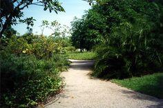 Parque da Gleba E, Rio de Janeiro, Brasil, Fernando Chacel, 1985