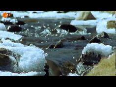 Terra X - Chile-Land der Extreme - YouTube