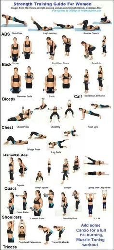 This is a good basic guide of strength training exercises. Many of these can be modified for beginners or made more challenging for recreational athletes.