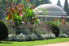 Poděbrady Park Siena, Panama, Most Beautiful Pictures, Places Ive Been, Cities, Park, Plants, Panama Hat, Parks