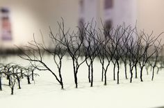Wire trees on display at Stuckeman