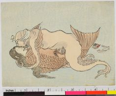 Shunga Small erotic print. Octopus making love to a mermaid. Unsigned (Japan early 19th century). The British Museum