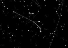"""""""Hij wees naar de lucht en zei : 'Oké, de lichtvervuiling is vreselijk, maar de felste ster die je ziet - daar, zie je hem?"""" (p. 114)"""