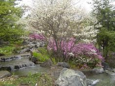 Montreal Botanical Gardens (Jardin Botanique de Montreal) Photo