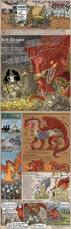 The Dragons of Dunge