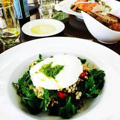 Belle burrata crémeuse et chou kale chez Bateel Cafe ! Parfait pour un bon déjeuner en terrasse à la Dubai Marina ;) _____________________________________ Delicious creamy burrata cheese and kale at Bateel Cafe ! Perfect lunch under the sun of Dubai Marina ;) _____________________________________ #parisianblackbook #dubaifood #dubairestaurants #bateel #burrata #kale