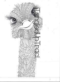 bundle animal coloring book fifteen detailed and whimsical animal prints for you to download