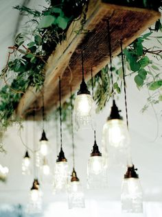 Lighting. Without the greenery