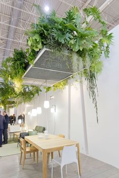 Plant Trends from Maison et Objet 2017 in Paris is part of Plant Trends From Maison Et Objet In Paris - A green design roundup with the latest green trends for 2017 from the Maison & Objet show in Paris Restaurant Interior Design, Cafe Interior, Office Interior Design, Office Interiors, Office Designs, Hanging Plants, Indoor Plants, Plantas Indoor, Screen Plants