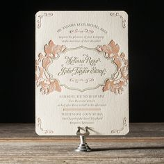 Vintage Apothecary by Lindsy Talarico for Bella Figura
