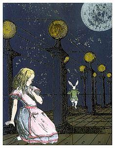 Alice... wondering