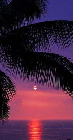 Beautiful tropical sunset at Kealakekua Bay on the Kona coast of #Hawaii | re-pinned by http://www.wfpblogs.com/category/southfloridah2o