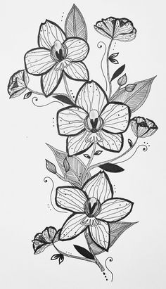 floral orchid tattoo design illustration feminine shoulder tattoo orchid flowers black pen and ink drawing