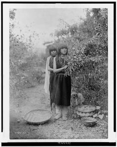 The fruit gatherers. Date Created/Published: c1905. Summary: Two Tewa girls picking fruit with basket, bowls on the ground. Photograph by Edward S. Curtis, Curtis (Edward S.) Collection, Library of Congress Prints and Photographs Division Washington, D.C. Photo by Add this to feed