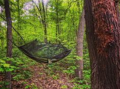 #Monday morning has me like: I want to go back! #Hammock #Camping #Weekend #Throwback #Travel #HudsonValley #HVCompass #HudsonValleyWeekend #HudsonValleyHikes #VisitVortex #Explore #Fun #Adventure #Hiking #Hike #Mountains #Nature #Landscape #Photography #Scenery #BestMountainArtists #LiveOutdoors #Photographer #HammockLife #Camp #GoPro #WildernessCulture by @williamkistner