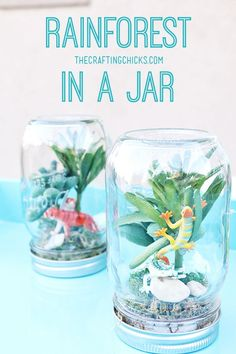 Create a mini rainforest in a jar! A fun and easy craft for kids to do during a Rainforrest or Jungle theme unit in preschool or kindergarten.
