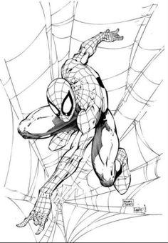 Spider-man   Michael Turner